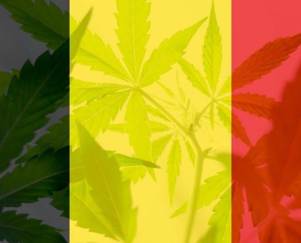 België cannabisolie