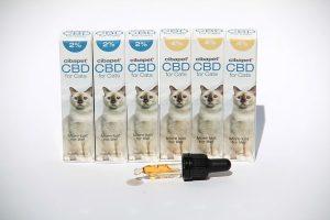 Cannabisolie voor kat