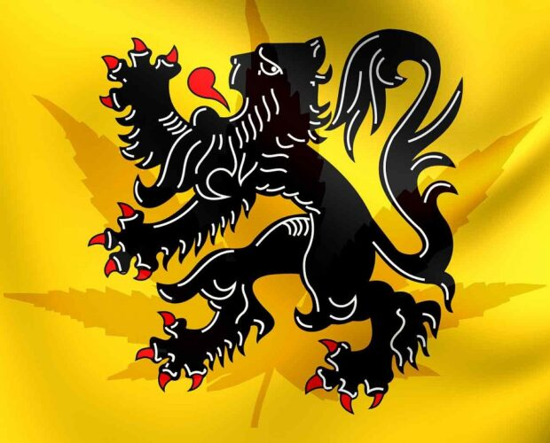 Cannabisolie in Vlaanderen