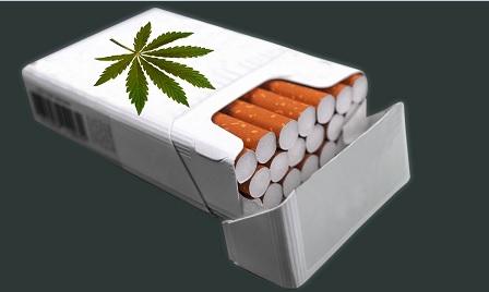 hennep sigaretten